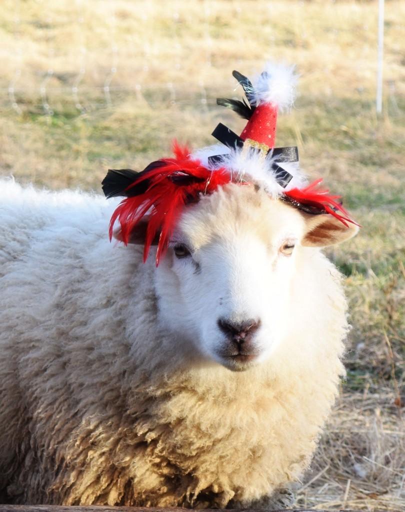 Elizabeth in a hat