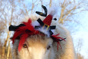 Shhhh! Don't tell Farmer Laura that I'm giving you this sneak peak at the Christmas photos. Here I am with one of my silly Christmas hats on!